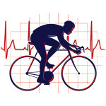 Cyclist and heartbeat